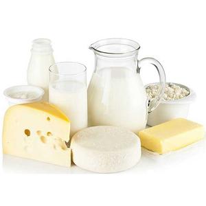 mini-zavod-po-proizvodstvu-molochnykh-produktov